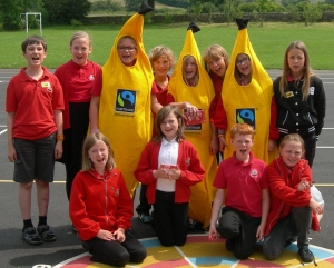 Tansley Fairtrade Committee